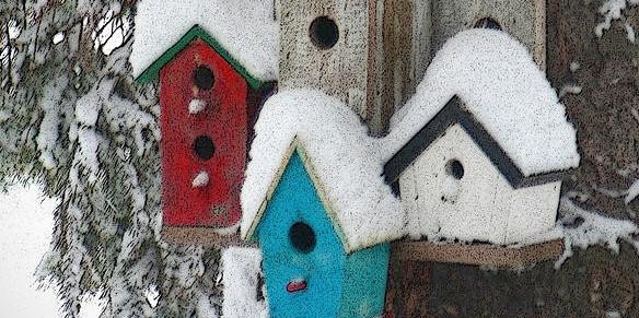winter bird houses crop